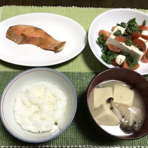 焼鮭と豆腐サラダ