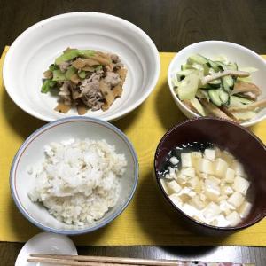 味付メンマと豚肉の炒め物と羊蹄山