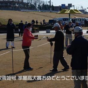 令和二年春季栃木展【中型雄部】