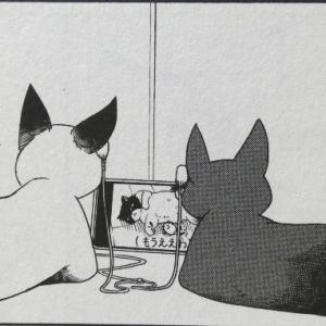 ふらいんぐうぃっち 第10巻 感想【累計160万部突破!!実家横浜に帰省してお仕事を】
