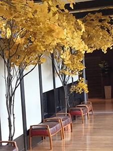 宮前平温泉は秋色に包まれていました〜(^.^)