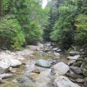 大樽滝まで川登