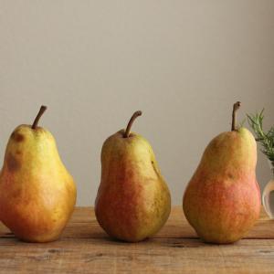勝手に季節の果物写真展