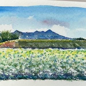 八ヶ岳風景