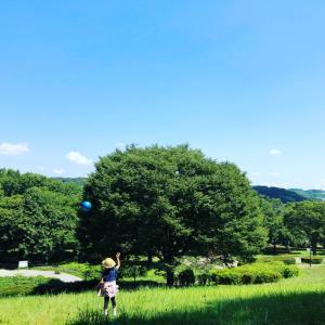 朝のお散歩☆
