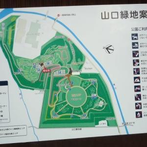 札幌市のパークゴルフ場めぐり〈23〉山口緑地パークゴルフ場東コース