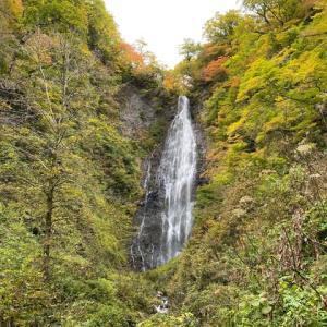 白神山地旅日記⑥ 滝、滝、滝、ブナの巨木、そしてワインディングロード