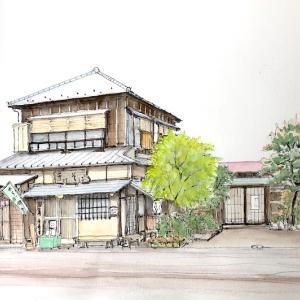 鎌倉 蕎麦屋さん