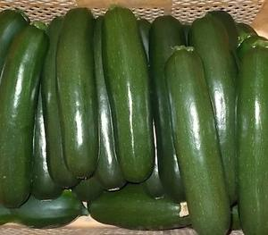 夏野菜の収穫・出荷