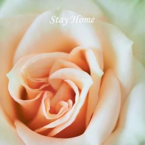 Stay Home・・・