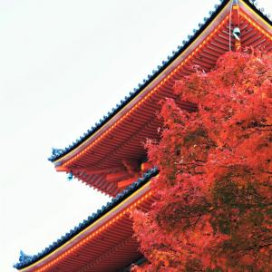 令和2年 京都の旅・・・ 清水寺