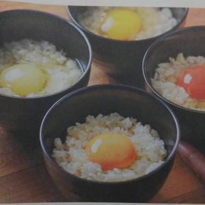 コロバト575 パックごと卵を保管すぐやろう #日経に学ぶ