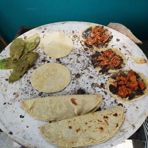 メキシコはトルティージャが主食だけど…。
