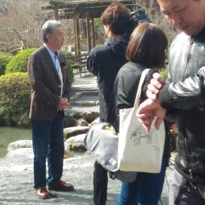 奈良、京都、お伊勢参りに行ってきました。