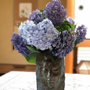 紫陽花と夏のさっぱりレモン鍋