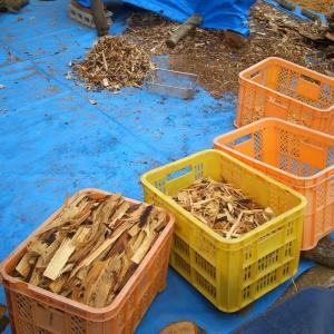 薪作りの後片付け1.薪割りの木屑編