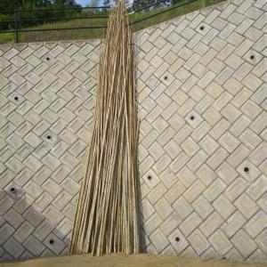 伐採竹の使い道(犬小屋の遮光ネット張り)