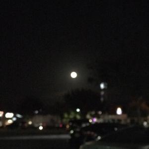 Full moon♪