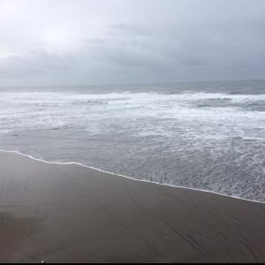 今日は海の日♪