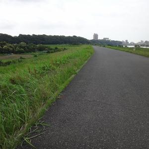 江戸川放水路河口まで