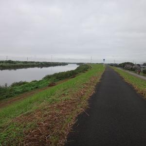 利根運河から布施弁天