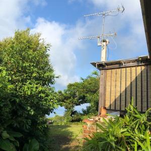 今朝の本部町♬沖縄