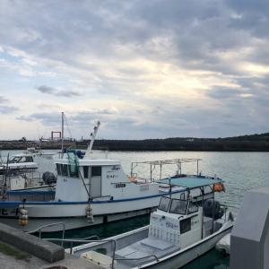 崎本部漁港♬沖縄