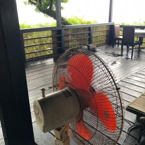 台風5号の後 沖縄