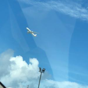 飛んで行きたいなぁ~♬沖縄