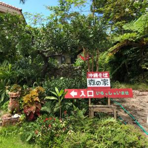 今日のお昼は沖縄そば♬森の家
