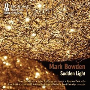 ボウデン サドン・ライト:見はるかす浜辺には点々と燈火