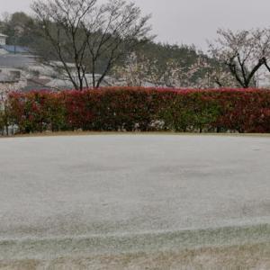 うぅ〜 寒っモーニング