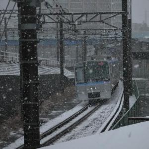 相鉄 snow snow
