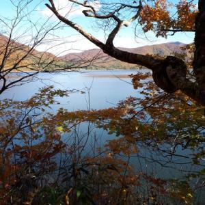 桧原湖付近の紅葉