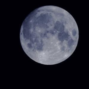 「中秋の名月」が姿を