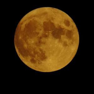 スタージャンムーン 8月の満月