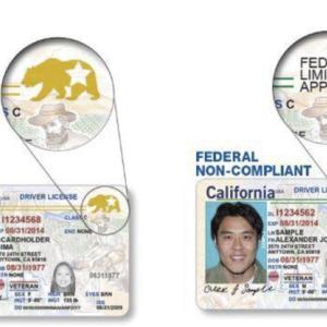 AAAメンバーはDMVに並ばなくてもREAL IDが取得可能@南カリフォルニア♪