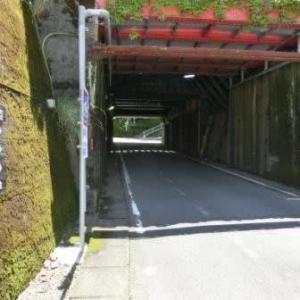 金谷大橋 (東海道歩き旅・遠江の国)