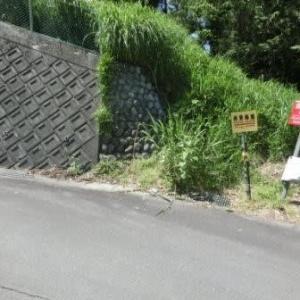 第三の難所 (東海道歩き旅・遠江の国)