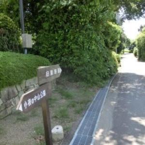 茶畑 (東海道歩き旅・遠江の国)(2020/09/09 投稿予定)