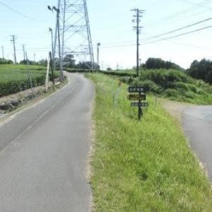 七曲がりの急坂 (東海道歩き旅・遠江の国)