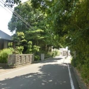 行人坂 (東海道歩き旅・遠江の国)