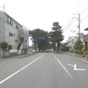 舞阪の松並木 (東海道歩き旅・遠江の国)