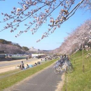 晴れの国の根拠 (岡山市内路面電車・番町線)