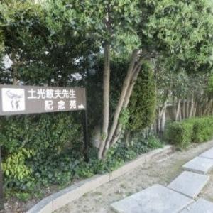 天神山の守り神  (岡山市内路面電車・番町線)