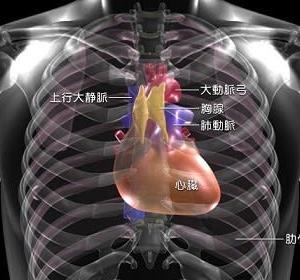 心臓外科医Drコトーの意外な告知