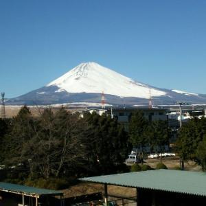 本年 初の富士山