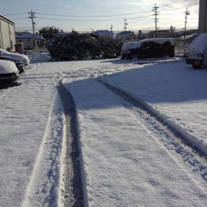 今シーズンの初雪