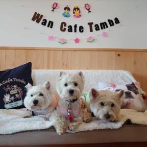 ランチ🍴はWan Cafe Tamba (ワンカフェ丹波)さん~♪♪