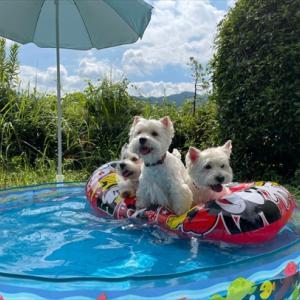 夏の思い出①ボートぷかぷか~♪♪